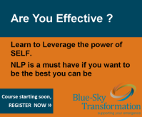 Are you effective - learn to leverage the power of Self