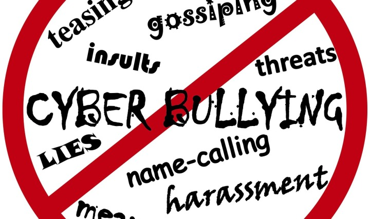 Cyber-bullying is only part of it, just a growing part. Bullying happens in so many contexts.