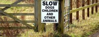 Did you notice where the author of this sign places children in relation to dogs and other animals?